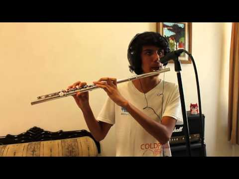 Little Things - One Direction - Flute Cover