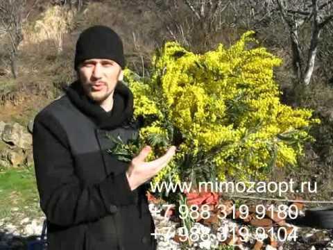 Предлагаем заказать искусственные цветы оптом и в розницу в интернет магазине bbcom. Ru. Искусственные цветы и флора для интерьера купить в.