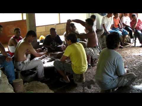 Sakau pounding on Pohnpei