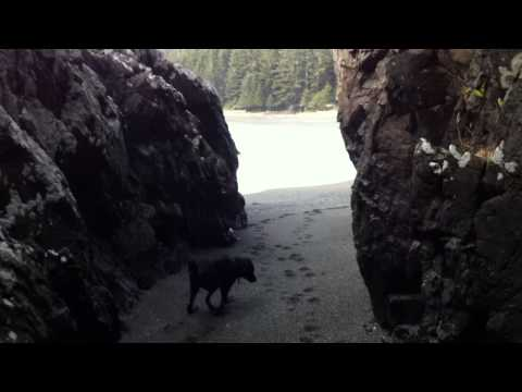 Bear's Adventures - Ucluelet British Columbia Canada - Beautiful Land