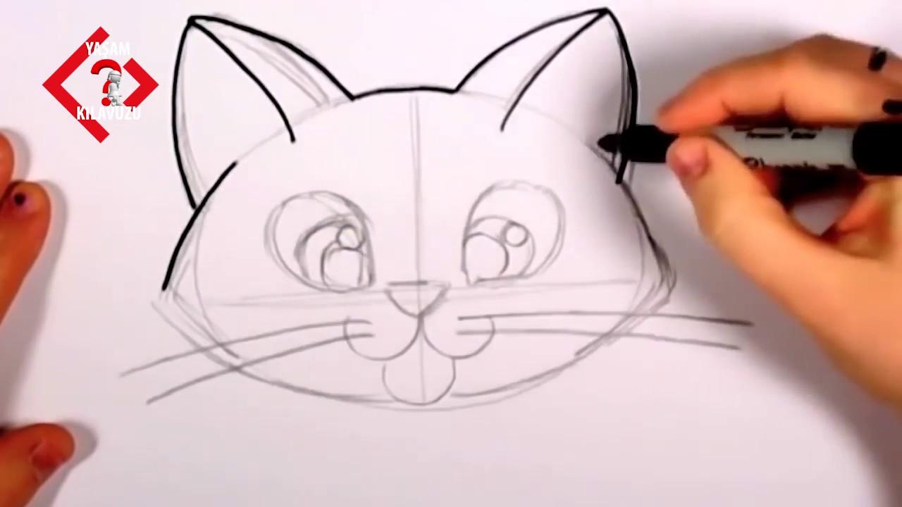 Cocuklar Icin Kedi Basit Kedi Cizimi Kolay Hayvan Cizimleri Youtube