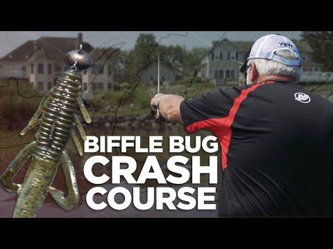 Biffle Bug Crash