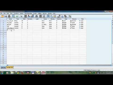 Hướng dẫn thực hành SPSS 18   KenBj   YouTube