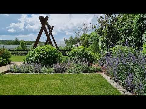 Прогулка по саду. Котовник и овсяница: плюсы и минусы растений.