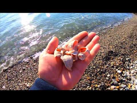 🔔Люди загарают купаются и это ноябрь Лазаревское пляжи осенью 2019 Сочи море 2019