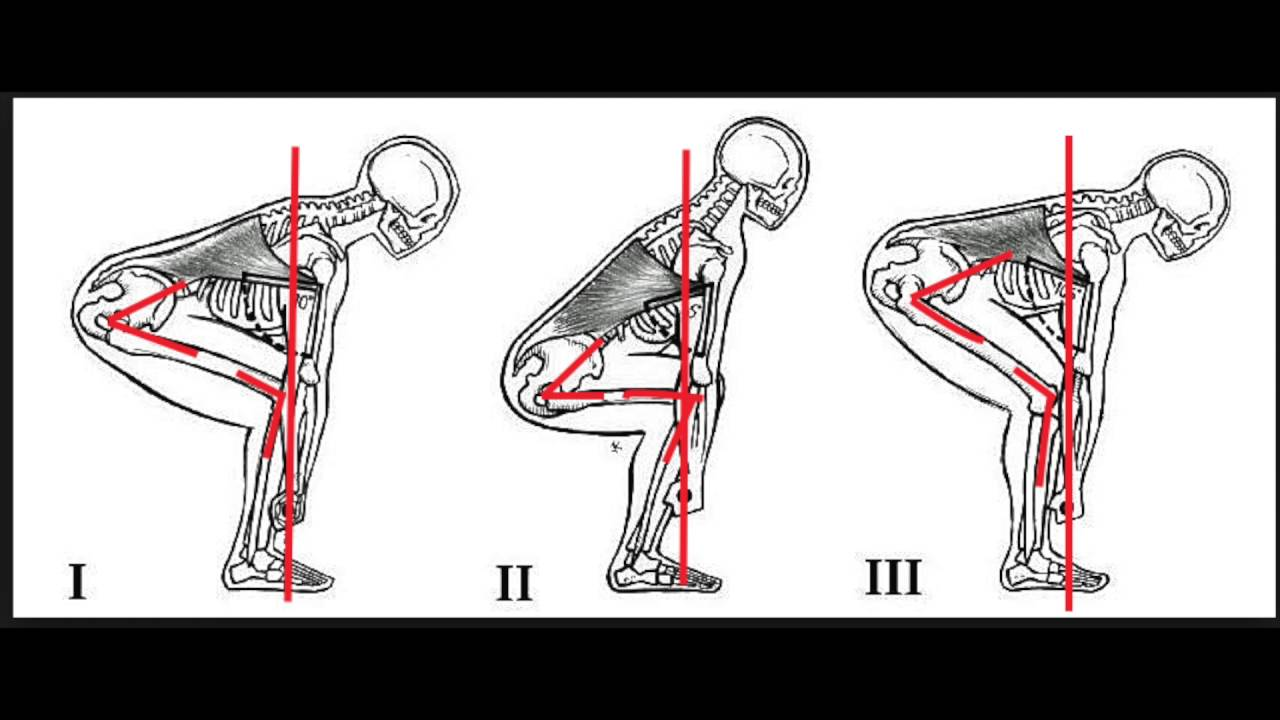 Anatomy Of A Deadlifter Youtube