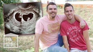 Dva tátové, 5. díl: Jak jsme se dozvěděli, že budeme mít dvojčata