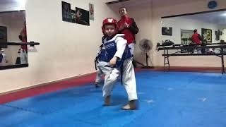 Tkd kids 5stars academy of sports- Tulkarm