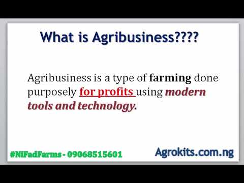 10 Most Profitable Agriculture Business Ideas In Nigeria - Part 1