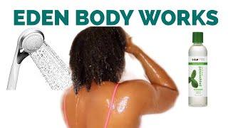 Eden & Bodyworks Peppermint Tea Tree Shampoo Review