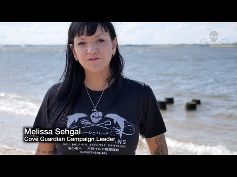 From the Cove to Captivity Video Contest (English)