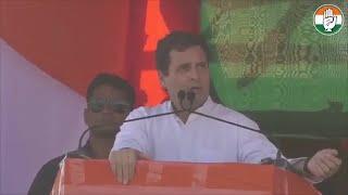 Rahul Gandhi compares Mamata Banerjee to PM Modi at Bengal ral…
