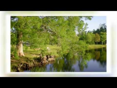 Beneath Still Waters - Emmylou Harris