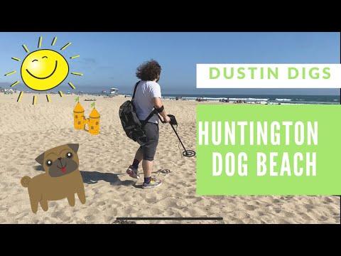 Metal Detecting At Huntington Dog Beach