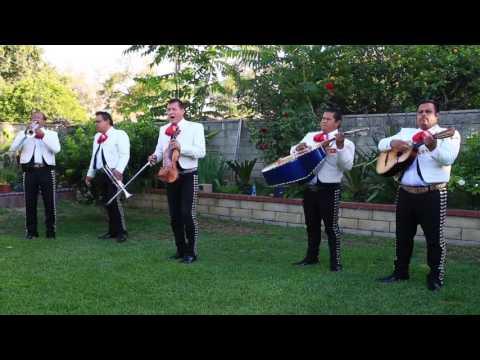 Mariachi Tequila Express - Hermoso Cariño