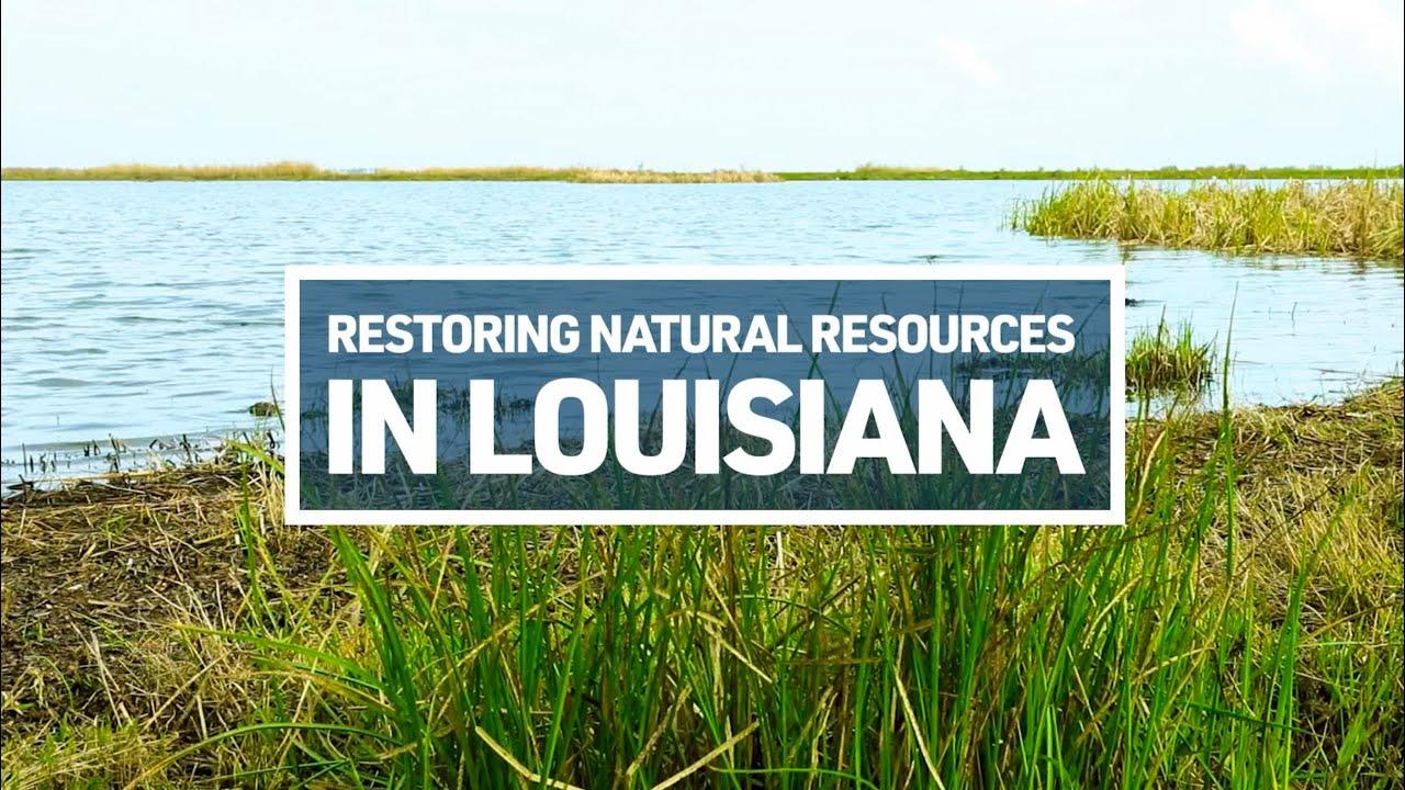 Restoring Natural Resources in Louisiana