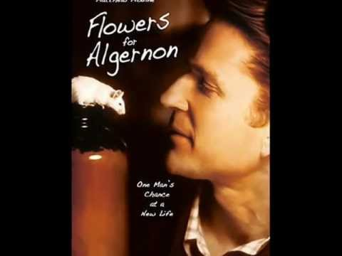 essay on flowers for algernon by daniel keyes Compare and contrast ideas, themes, and important points from flowers for algernon by daniel keyes part of a comprehensive study guide by bookragscom.