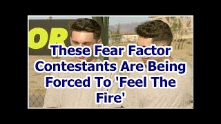 These Fear Factor Contestants Are Being Forced To