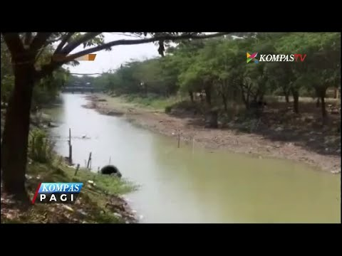 Krisis Air Bersih, Warga Demak Gunakan Air Sungai Mp3