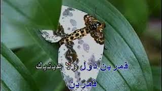 عمرو دياب قمرين كاريوكي ahmed disco dj