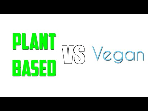 Plant-Based Vs Vegan... Whats the difference??