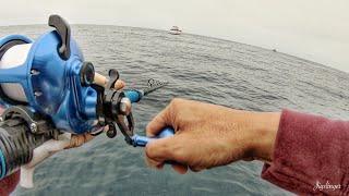 Fishing Catalina Island on the Pescador