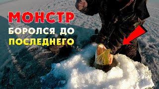 МОНСТР БОРОЛСЯ ДО ПОСЛЕДНЕГО Зимняя рыбалка на щуку Большая щука на жерлицы