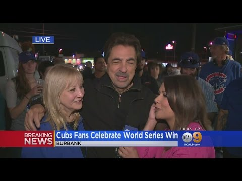 Local Cubs  Celebrate World Series Victory In Burbank