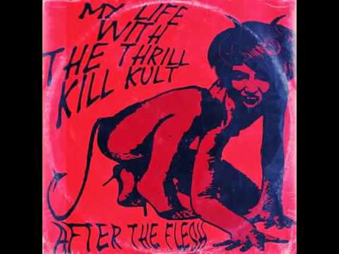 My Life With The Thrill Kill Kult -  After The Flesh