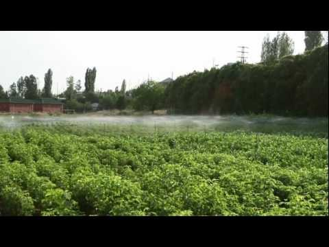 ADRA Azerbaijan 2012 - Energy & Hope