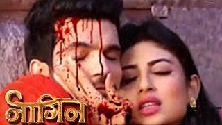 Shivanya & Ritik To Get BRUTALLY KILLED | Last Episode Of NAAGIN