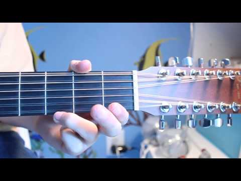 wreck of the edmond fitzjarold (chord & melody tutorial)