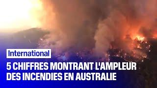 Voici les 5 chiffres qui montrent l'ampleur du désastre en Australie