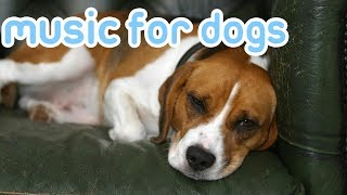 Relax Your Dog Music! Calm Your Dog with Our Best Music! NEW 2018!