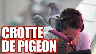 Il croit que c'est de la sauce : il lèche une crotte de pigeon
