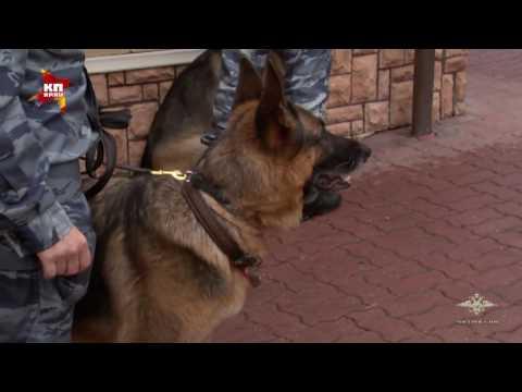 В Москве задержали «вора в законе» Шакро Молодого