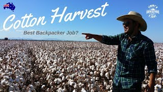 "Farm Work ""100% Cotton"" - Vlog #28"