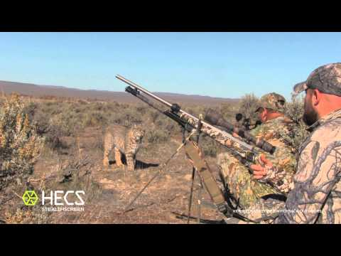 HECS Stealthscreen Bobcat Encounter