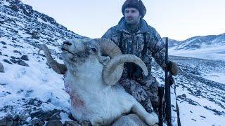 Hunting in Tajikistan Pamir Marco Polo sheep www.hunting.az