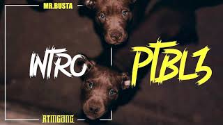 MR.BUSTA - INTRO 🔥 | PTBL3 |