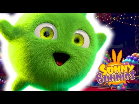 Cartoons for Children | Sunny Bunnies MAGIC BUNNIES | Funny Cartoons For Children