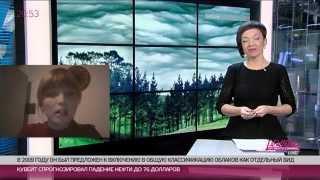 Undulatus Asperatus. Первое новое облако за 60 лет