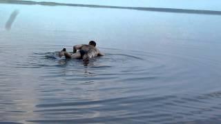 Петухово. Соленое озеро Медвежье.(, 2011-07-23T17:46:10.000Z)