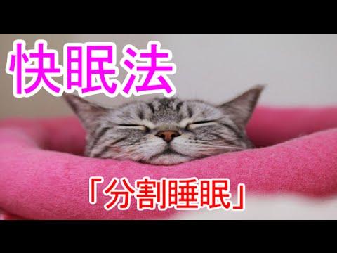 「黒柳徹子 分割睡眠」の画像検索結果