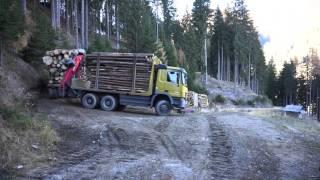 Holztransport durch 3 LKW