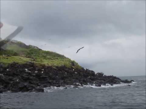 Galápagos 2012: Off North Seymour