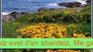 Hirvoudoù - Tri Yann an Naoned
