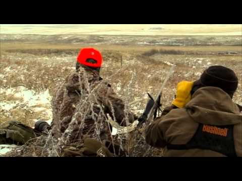 How To Hunt Whitetail Deer In Alberta Canada With Willow Creek Outfitters