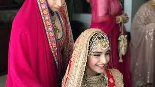 Anand Ahuja and  Sonam Kapoor wedding