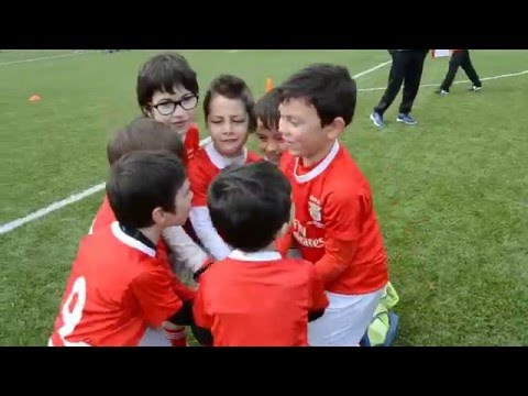 Escola de Futebol Benfica - Mata Mourisca